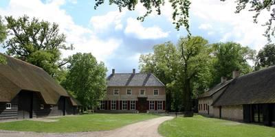 Extra bomen om Brabants bos te versterken