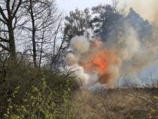 Natuurbrand van een hectare groot bij Heeze onder controle