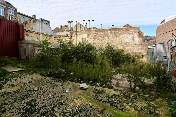 Ce terrain pourrait devenir un jardin de quartier, mais une dernière étape doit être réalisée.