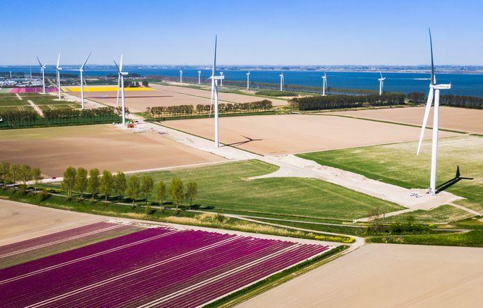Het windmolenpark bij Middelharnis (foto ter illustratie).