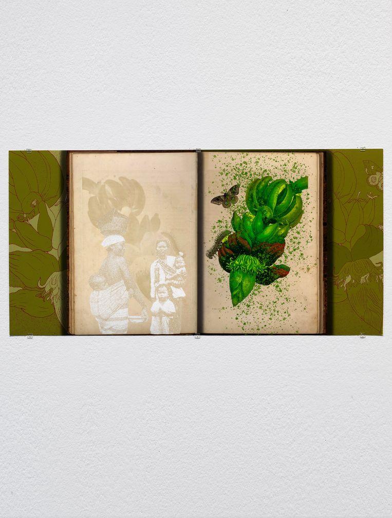 Patricia Kaersenhout: 'Of Palimpsests and Erasure', bewerkte pagina's van de 18de-eeuwse wetenschapper en kunstenaar Maria Sibylla Merian (2021), Beeld Gert-Jan van Rooij