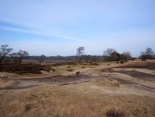 Lokale partij uit Laren pleit voor beleggen van miljoenen uit deal rond Goois Natuurreservaat