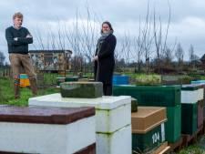 Kees en Jannitha uit Vaassen bouwen nieuw leven op dankzij... de bij