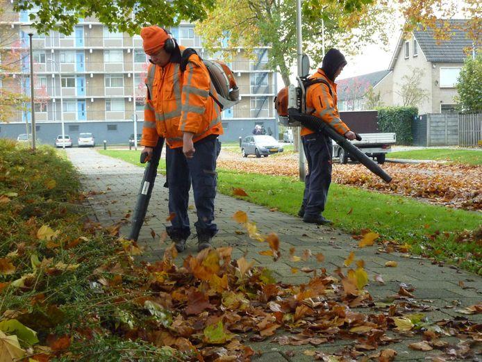 Het gaat onder meer om een baan als wijkconciërge, hulp op scholen, parkbeheerder en gastheer en -vrouw in overheidsgebouwen.