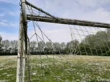 Jarenlange zoektocht naar plek voor kleine huisjes eindigt voorlopig op voetbalveld in Kortgene