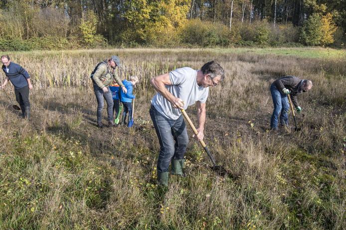 Vrijwilligers onderhouden een poel in het Aamsveen, zodat de boomkikker zich daar thuis blijft voelen.