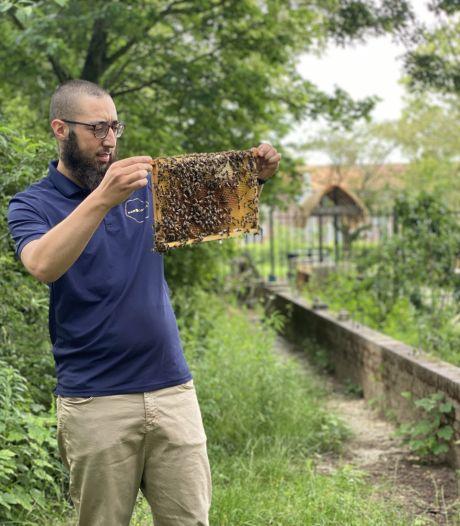 De bijen van imker Redouan Azarkane (26) redden zich prima in Malburgen, de honing is het bewijs