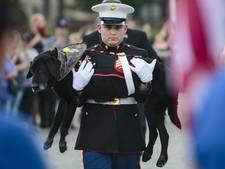 Amerikaanse legerhond Cena is uitgediend