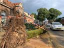 De omgevallen boom aan de Weurtseweg in Nijmegen is inmiddels in stukken gezaagd.