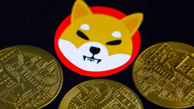 Cryptomunt Shiba Inu 28 miljoen procent hoger in één jaar. Hoe valt die waanzinnige stijging te verklaren?