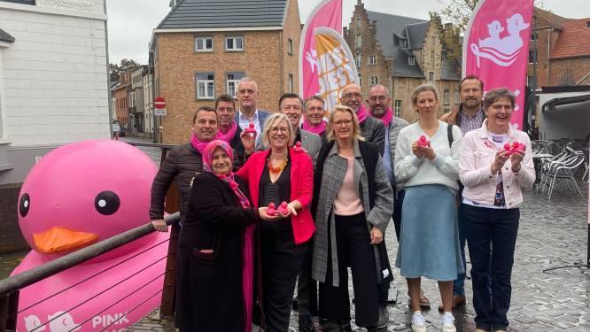 """Diest is gaststad voor allereerste Europese Pink Duck Race mét publiek: """"Het gevecht tegen deze ziekte is nog steeds volop aan de gang en deze maand relevanter dan ooit"""""""