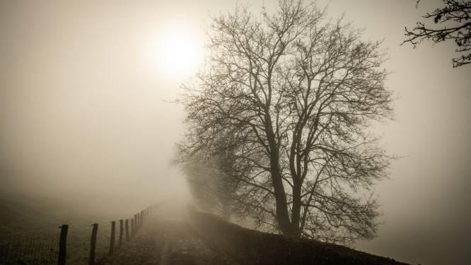 Opgelet voor gladde wegen: KMI waarschuwt voor ijsplekken en aanvriezende mist