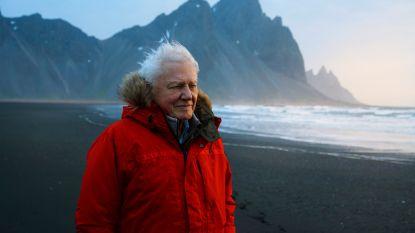 """David Attenborough verschijnt op Instagram en heeft in geen tijd een miljoen volgers: """"De wereld zit in de problemen"""""""