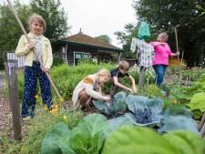 Gemist? Burgemeester pleit voor harder aanpakken drugsexport en Delft heeft geen geld voor nieuwe school