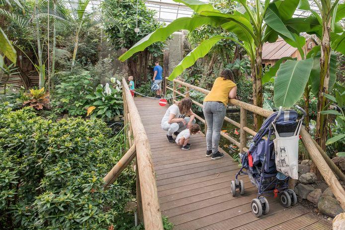 Tropical Zoo Berkenhof kan sinds kort weer bezocht worden. Wel zijn er wat maatregelen getroffen zoals een looprichting. Daarvoor moet ook wel eens een brug worden afgesloten.