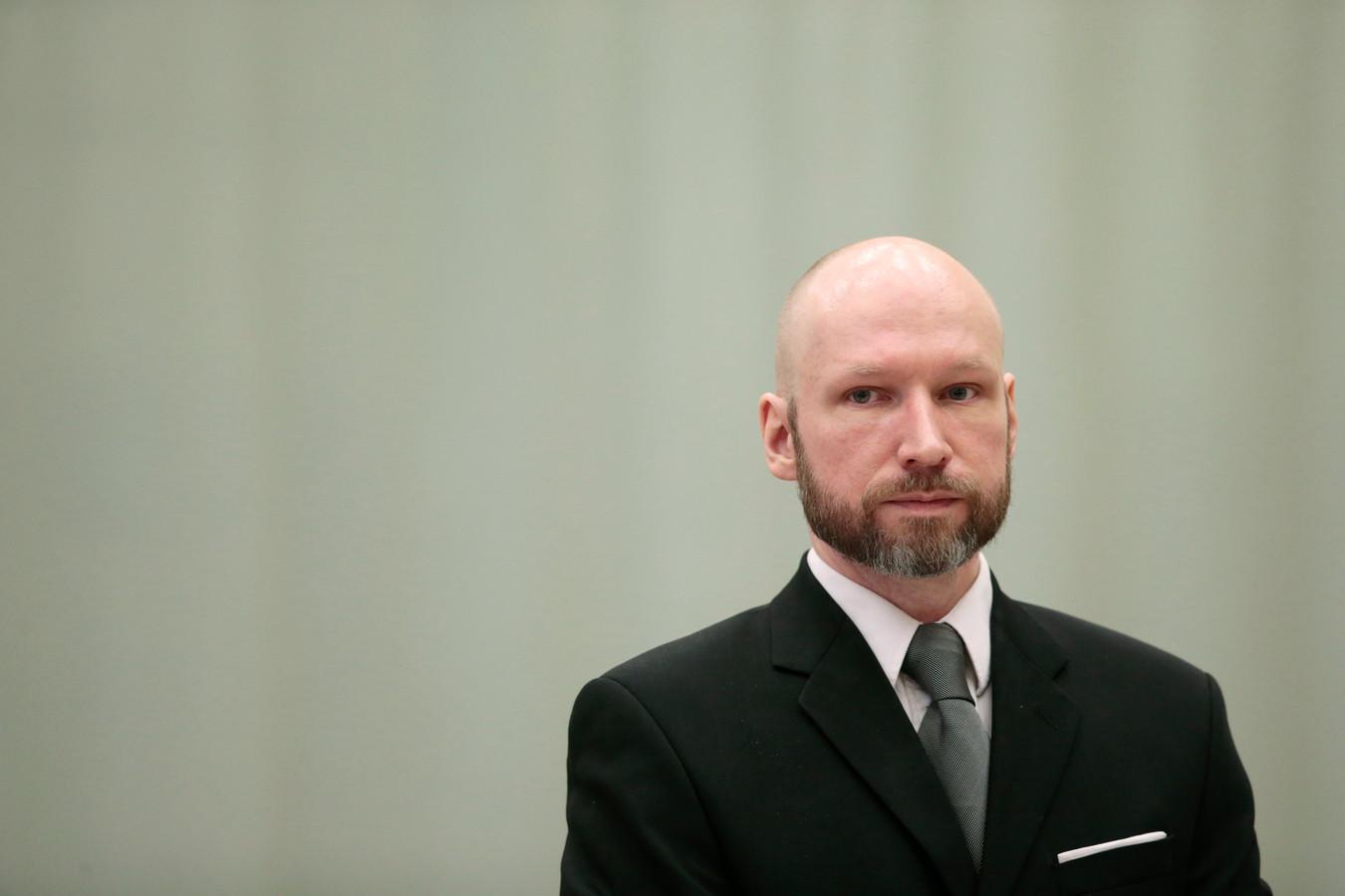 Déguisé en policier et armé d'un fusil semi-automatique Ruger Mini-14 et d'un pistolet Glock, Breivik avait fauché 69 personnes, des adolescents pour la plupart, en ouvrant le feu pendant près d'une heure et quart contre un camp d'été de la Jeunesse travailliste, le 22 juillet 2011.