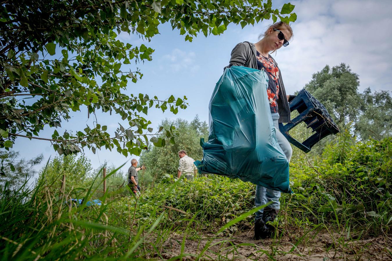 Vrijwilliger Dyanne Kokx uit Dreumel helpt de uiterwaarden mee schoonmaken.