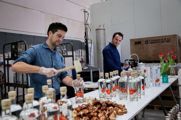 Tulpenwodka 'Clusius Craft Distillers' gemaakt door Joris Putman en Bart Bouter. Beeld Inge van Mill