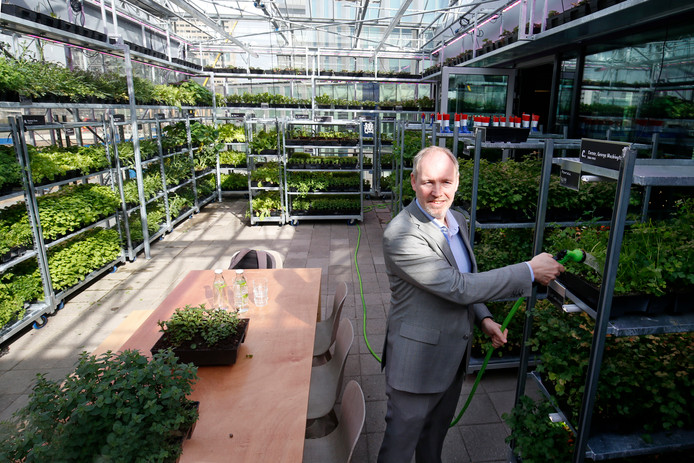 Concept manager van Albron Ernest van de Voort in de urban garden van The Greenhouse.