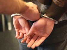 Man uit Goes aangehouden vanwege ruzie om agressieve hond