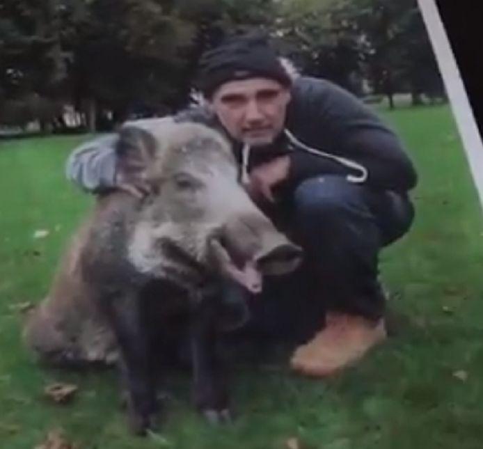 """Alain Martin et """"Hercule"""", son sanglier domestiqué abattu par des chasseurs"""