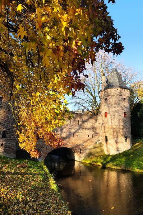 Dit zijn de mooiste herfstfoto's uit Amersfoort 🍂