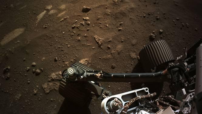 Marsrobot Perseverance bevestigt de vermoedens rond zijn landingsplaats: krater was ooit een meer