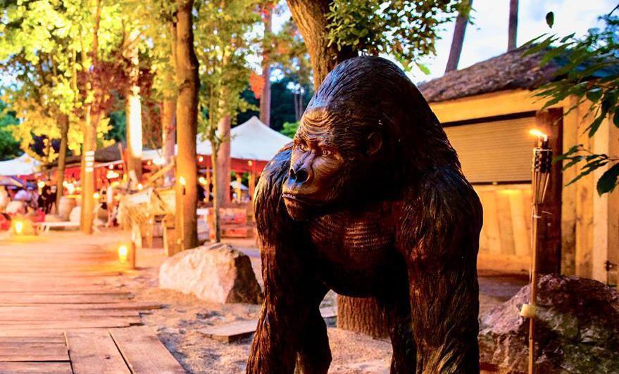 Gelieve de politie te bellen indien deze gorilla toevallig in uw vizier komt.