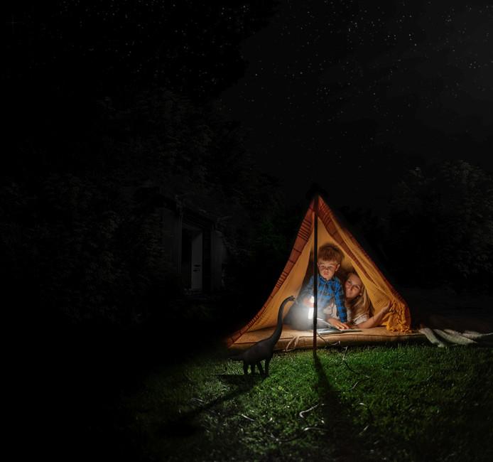 Een verblijf op de camping van Dinopark Twente wordt gecombineerd met een nachtelijke speurtocht naar dinosaurussen.