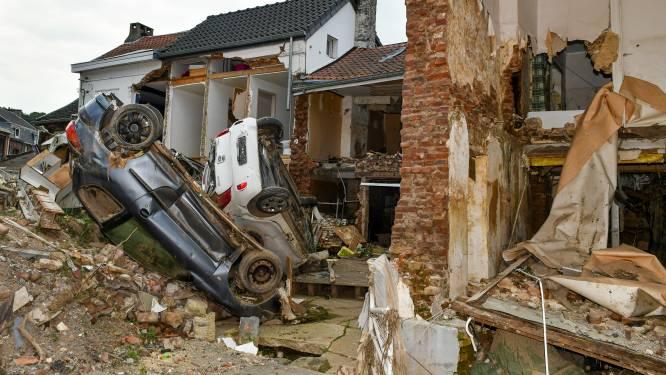 """WWF: """"Overstromingen van juli verergerd door intensieve fijnsparplantages in Wallonië"""""""