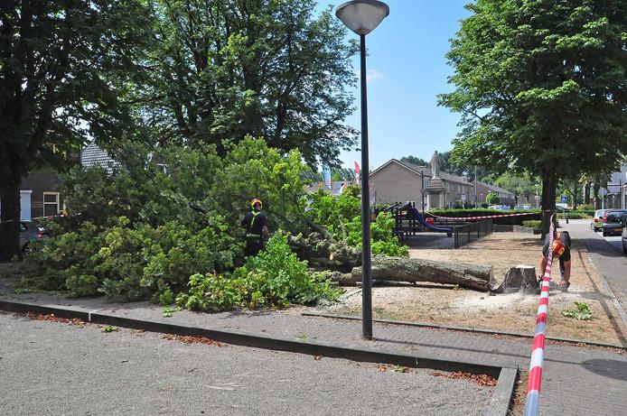 De boom bij het speeltuintje werd omgezaagd.