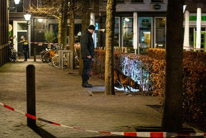 Een politiehond speurt naar sporen van een mogelijke schietpartij aan de Nieuwe Markt in Zwolle.