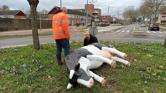Maart 2021: Medewerkers van aannemer J. Bouwman JR verwijderen de gesloopte kunstkoeien van de rotonde op de Huissensestraat/Stadswaardenlaan in Arnhem.