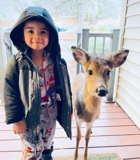 'Ik doe de voordeur open en daar staat mijn zoon (4) met een jong hertje'