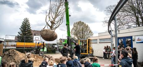 Het schoolplein van de basisschool in Altforst krijgt een facelift: tegels eruit, groen erin