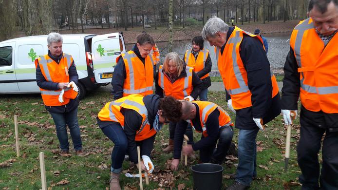 Vrijwilligers van diverse 'schoonmaakteams' in de Reeshof planten in het Huibevenpark narcissenbollen die straks samen een zon vormen.
