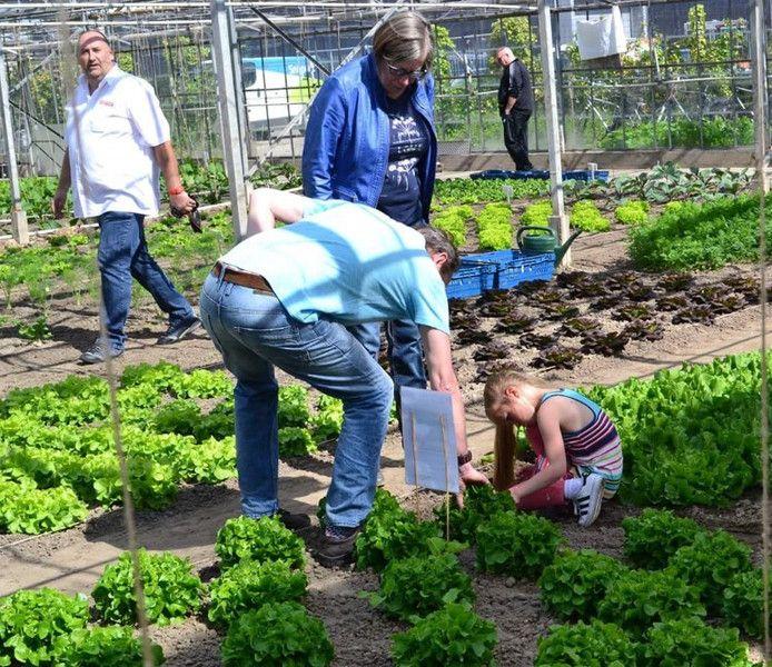 De buurtkas van Boeregoed staat vol met gezonde producten.