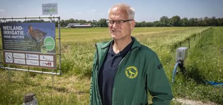 Vogelwerkgroep Geesteren: 'Reekalf gedijt bij maaien met beleid'