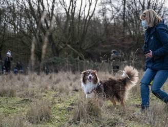 """Hondenweide en geboortebos op komst in Waasmunster: """"Realisaties zijn nog voor dit jaar"""""""