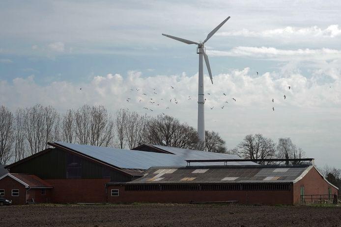 De Cleantech Regio wil zwaarder inzetten op het winnen van duurzame energie via zonnepanelen op daken van bedrijven en stallen. De regio wil 33 procent van alle daken hiervoor benutten.