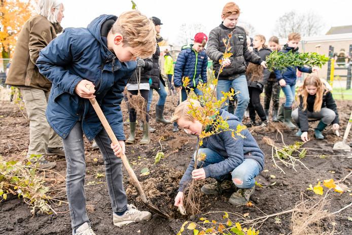 Lithoijense kinderen leggen een mini-bosje aan.