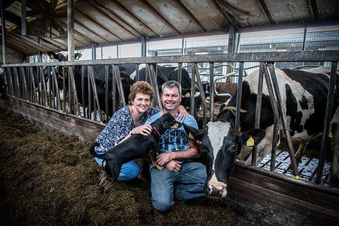 Herbert Verploegen met zijn vrouw Annelies en hond Pip tussen de koeien op hun bedrijf in Winssen.