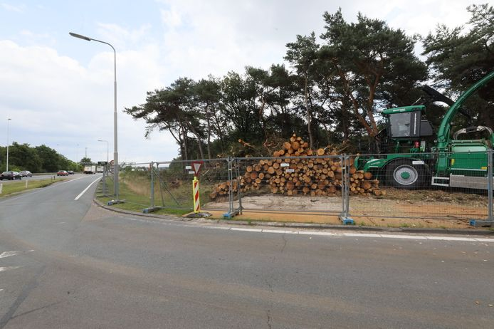 1900 bomen moesten wijken langs de A58 bij Kloosters voor een testlocatie voor duurzame wegenbouw van Rijkswaterstaat.