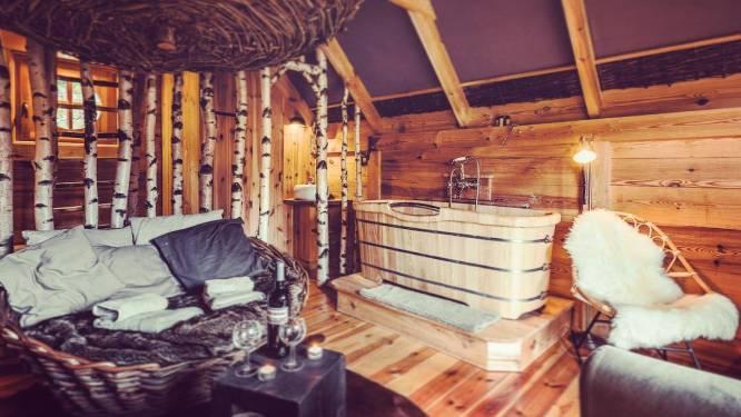 Les Cabanes de Rensiwez, une bulle d'oxygène en plein cœur des Ardennes