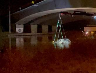 Wagen met stoffelijk overschot in kanaal in Stasegem had Franse nummerplaten: autopsie moet vrijdag duidelijkheid brengen