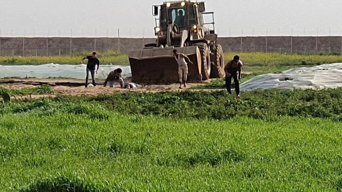 Ophef om video waarop te zien is hoe Israëlische soldaten lichaam van Palestijn met bulldozer van de grond schrapen