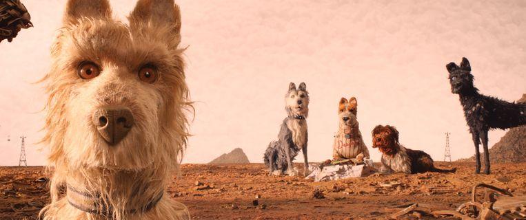 In de nieuwe Wes Anderson-film spelen honden de hoofdrol. Beeld EPA