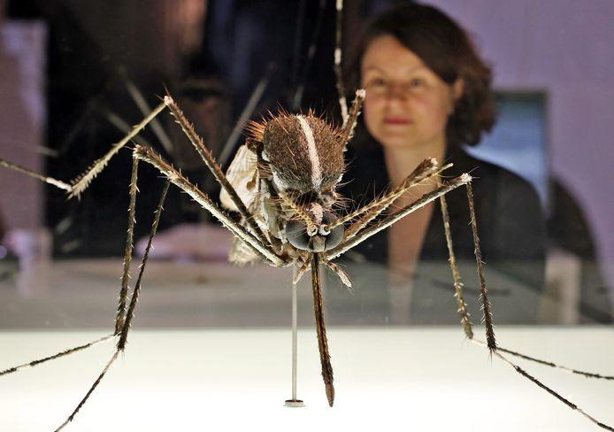 Een uitvergrote mug op een tentoonstelling in Duitsland