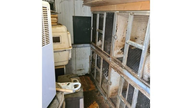 Tientallen dieren leefden in veel te kleine en vieze kooien.