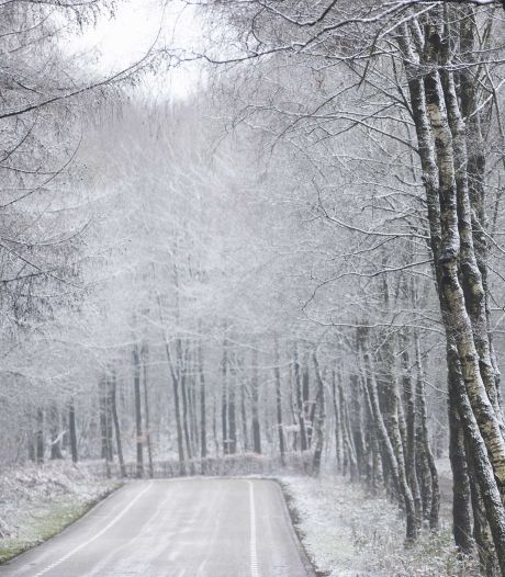 Een Sneeuw!